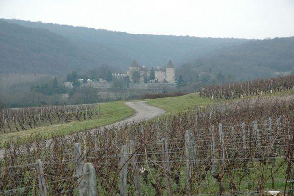 chateau-et-vignes