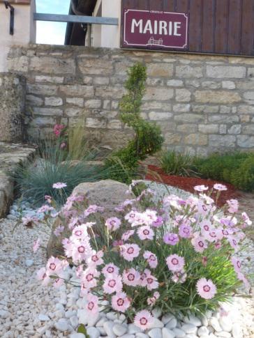 jardin-sec-de-la-mairie-1ere-partie-apres-2