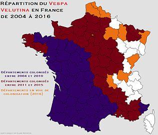 repartition-du-frelon-asiatique-en-france-de-2004-a-2016