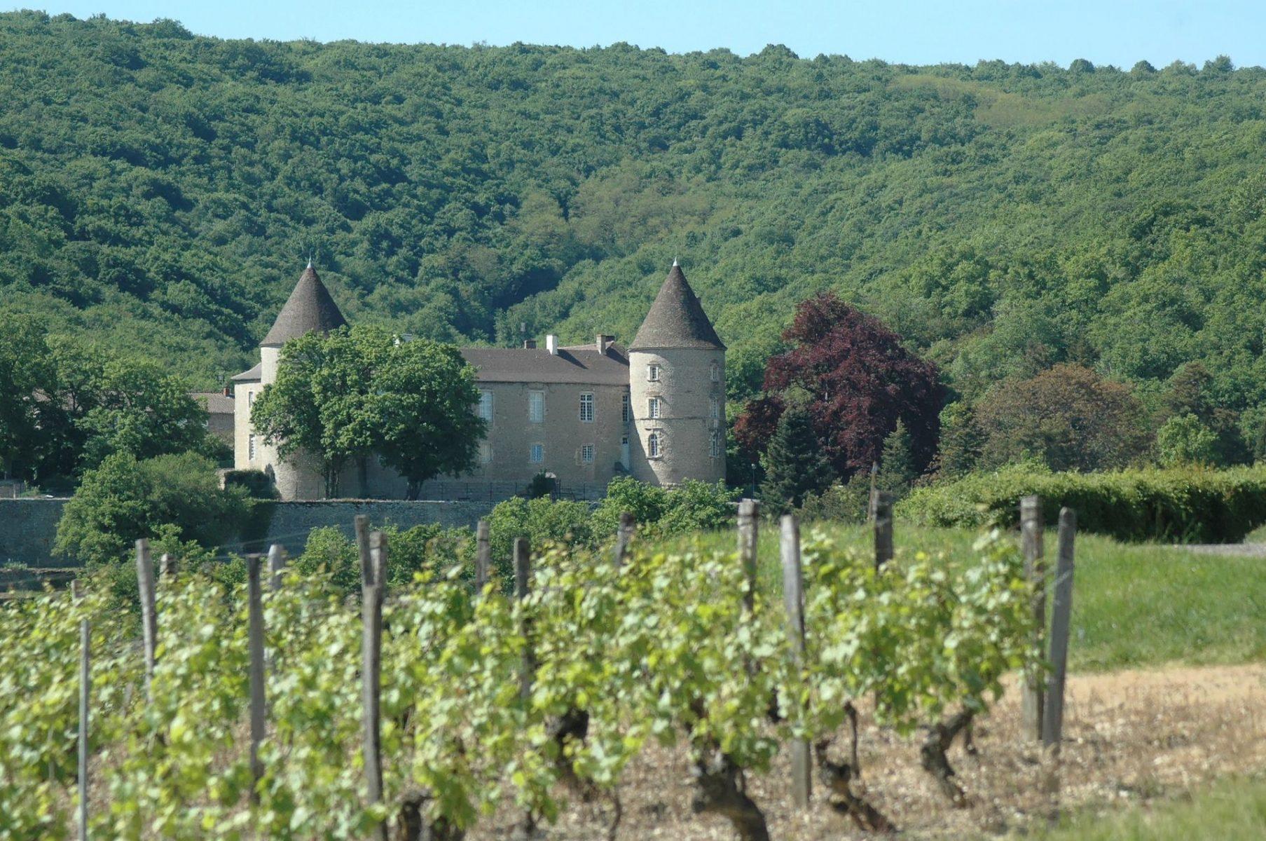 Cruzille en Saône et Loire